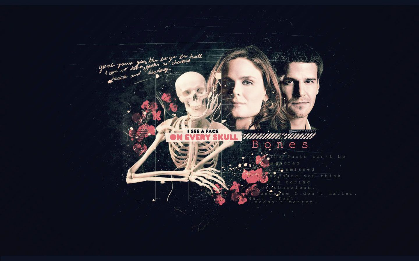 Pictures From Tv Show Bones