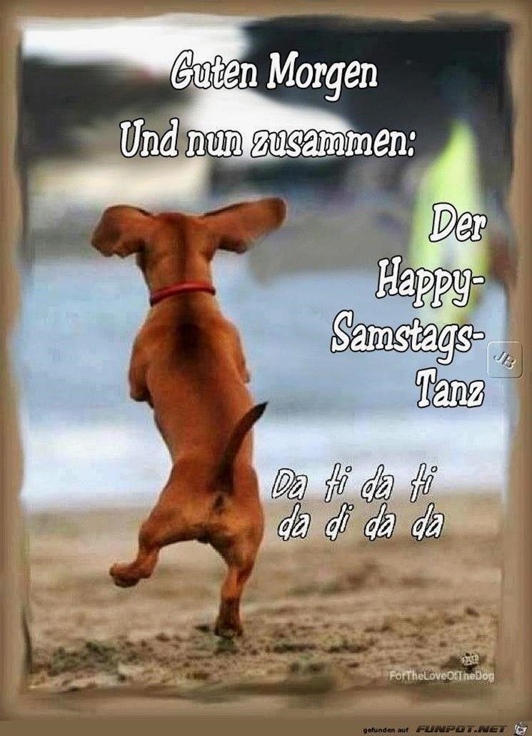 Schones Wochenende Bilder Hunde Freitag Tanz Guten Morgen Lustig Urkomische Zitate