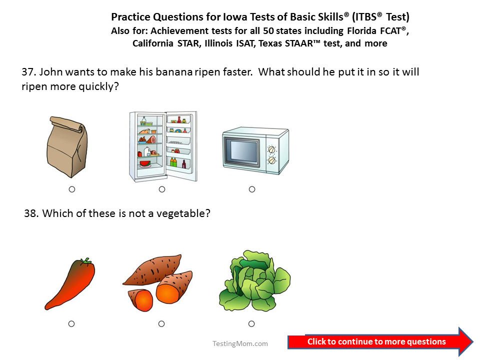 Practice Questions for the Iowa Test of Basic Skills (ITBS) 1st and ...