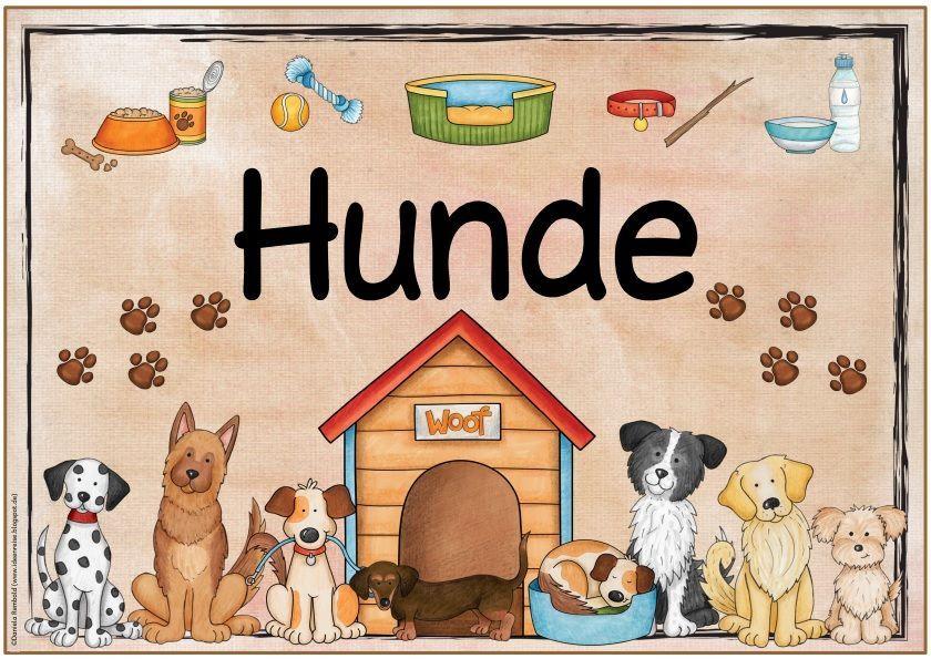 Neue Themenplakate Pilze Hunde Kinderrechte Kinder Aus Aller Welt Die Nachs In 2020 Kinderrechte Thema Hund Basteln