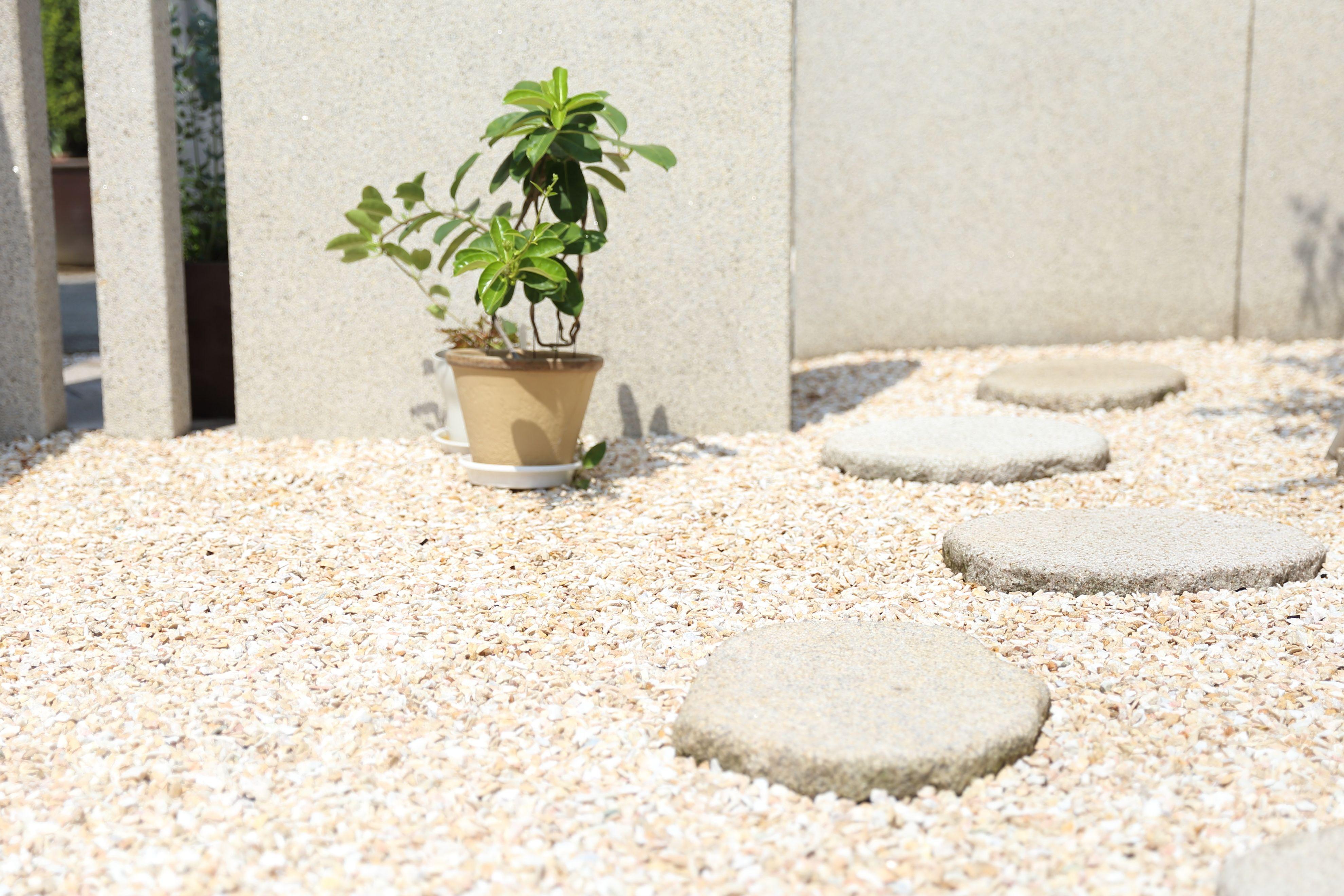 庭 お庭 ガーデニング 砂利 飛び石 植物 エクステリア 外構 庭から考える家づくり 庭のある暮らし Garden House Home 庭 飛び石 庭 庭 砂利