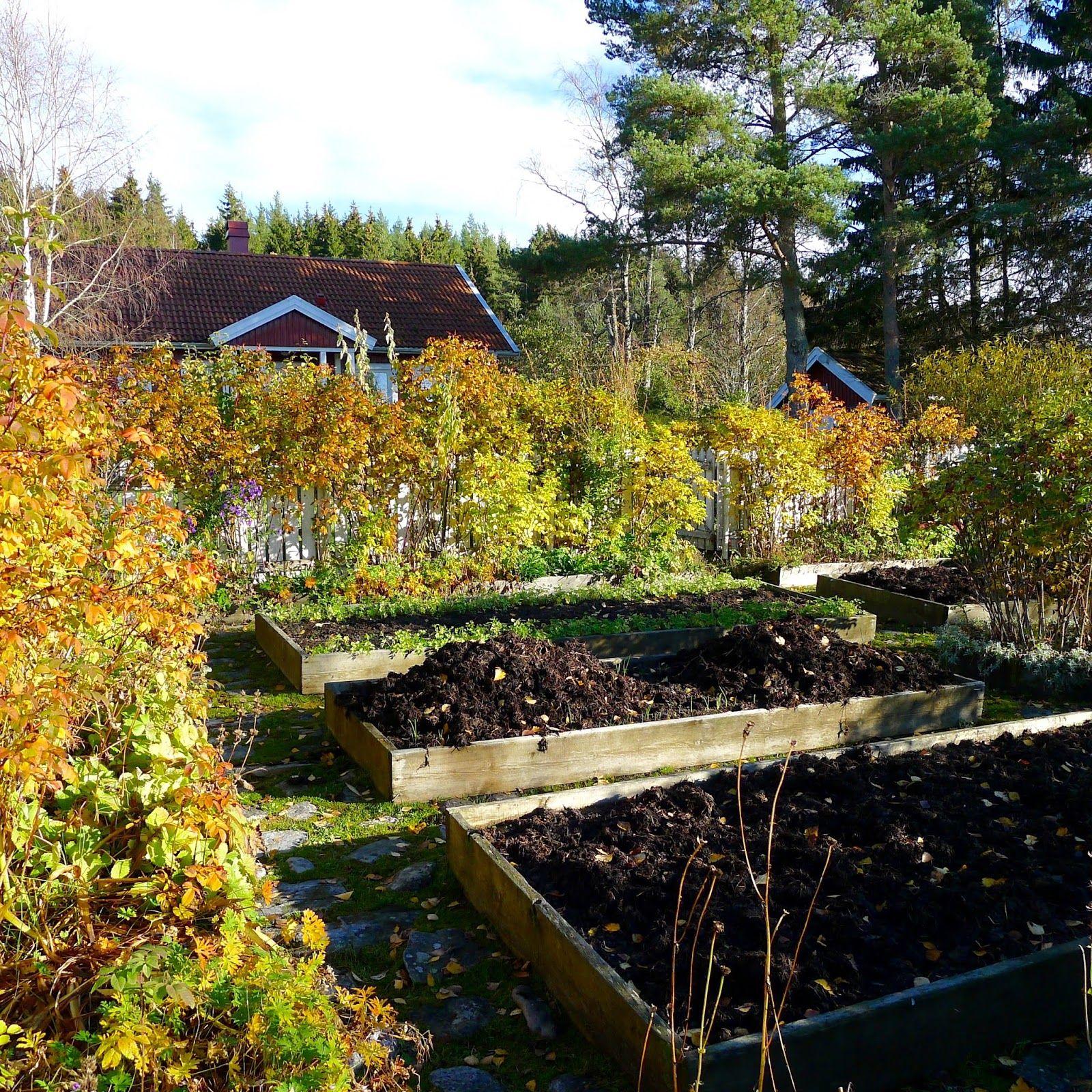 Mias Landliv: October Garden