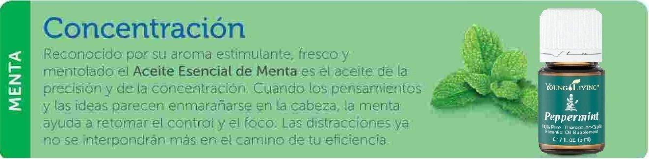 Menta para estudiar y concentrarse refresca estimula y - Concentrarse para estudiar ...