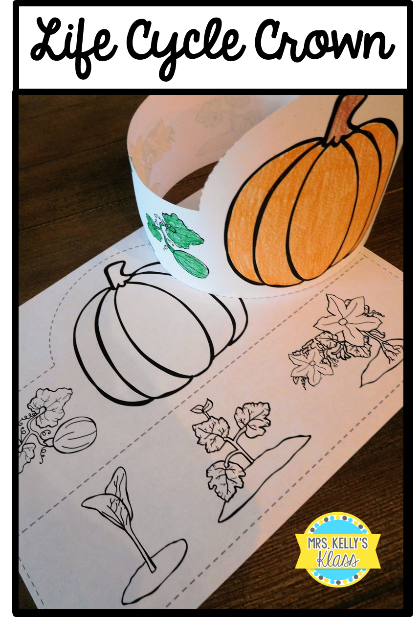 Pumpkin Life Cycle Foldable Video Pumpkin Life Cycle Life Cycles Science Projects For Kids [ 1500 x 1000 Pixel ]