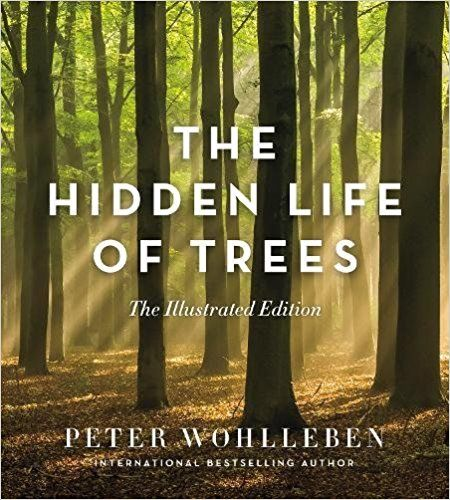 [PDF DOWNLOAD] The Hidden Life Of Trees: The Illustrated