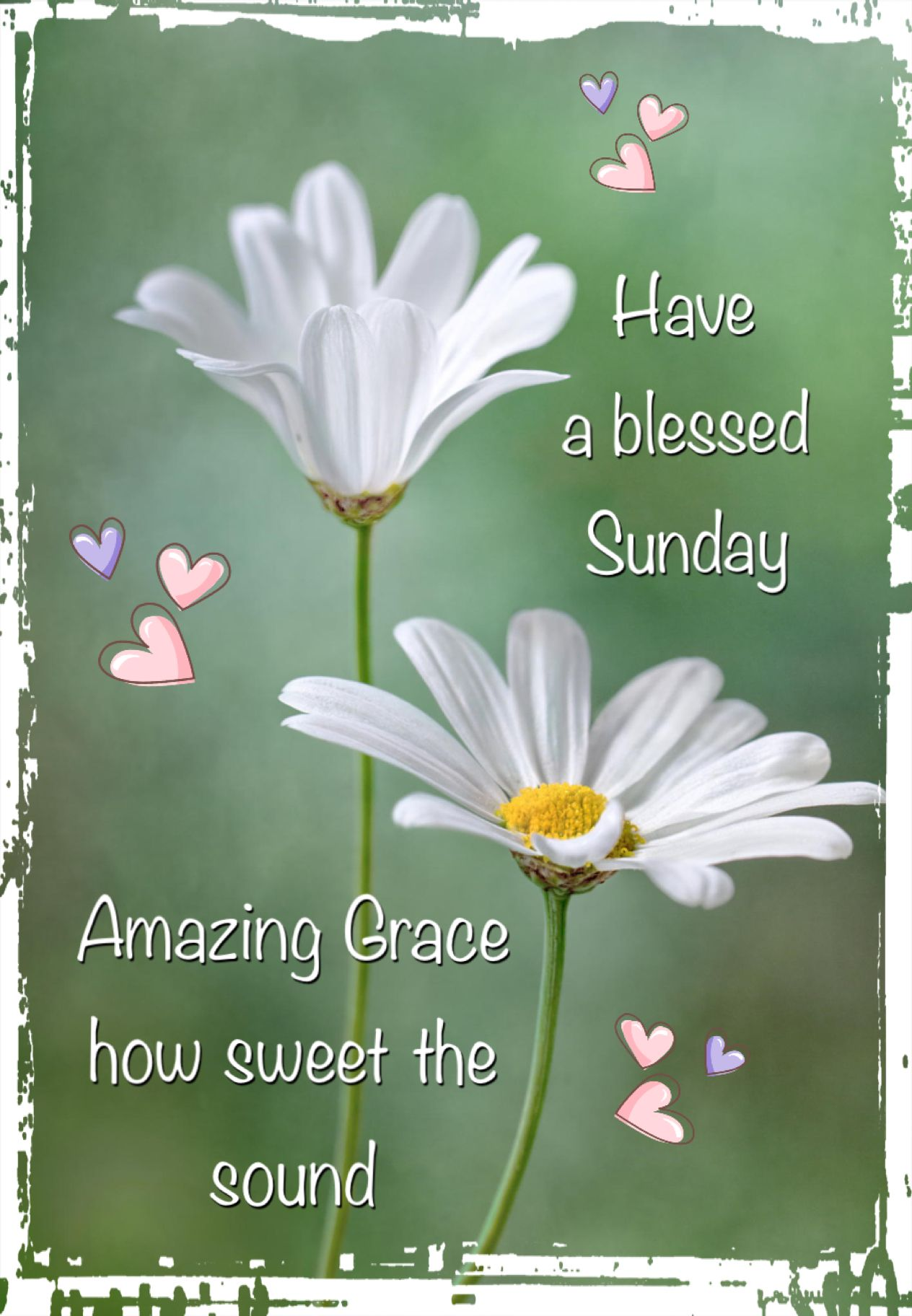Praying You Have A Sunday Full Of The Love Of Our Lord My Dear