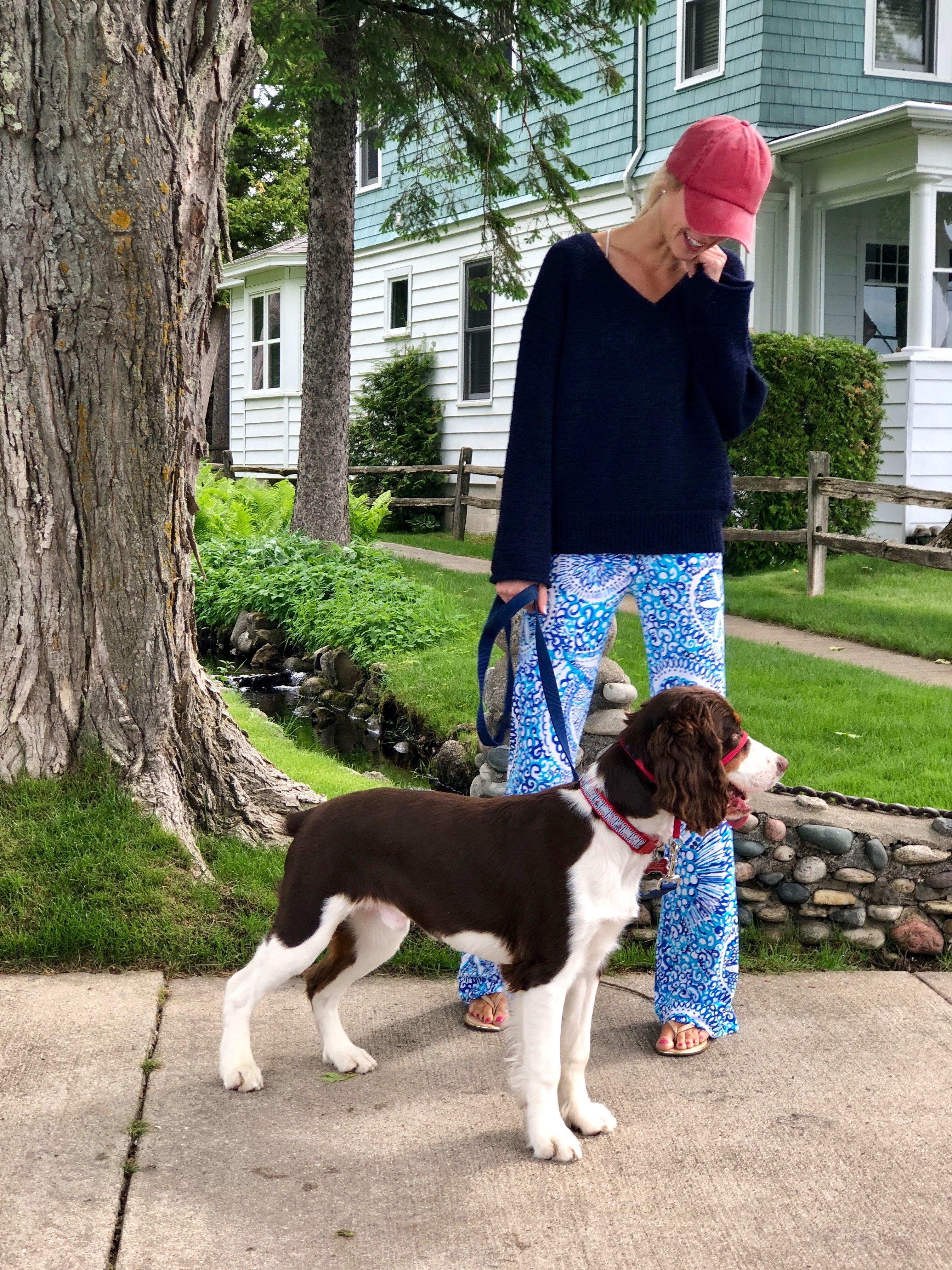 Harbor Springs Mi With My English Springer Spaniel Puppy Mac