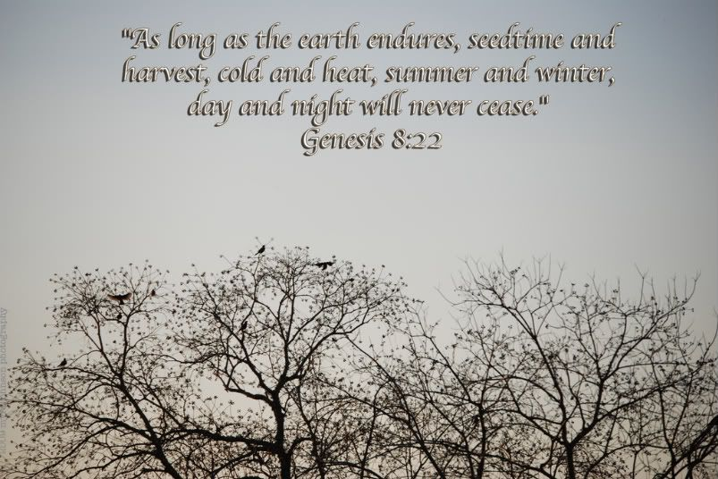 Bible Quotes About Changing Seasons As Different As Night And Day