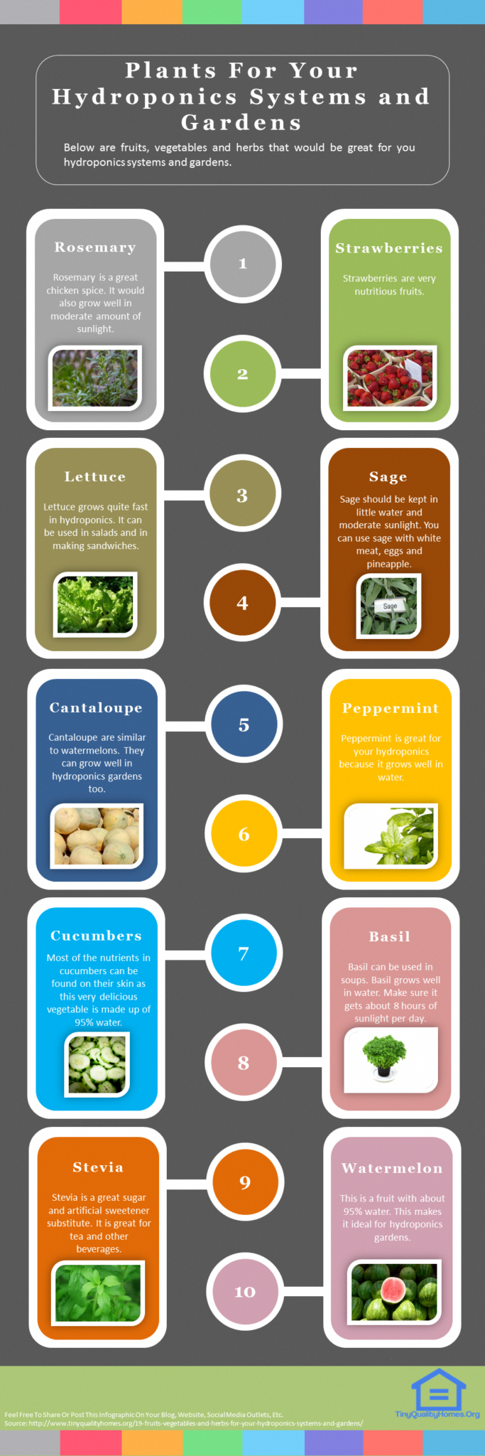 19 Fruits Vegetables And Herbs For Your Hydroponics Systems And Gardens This Guide Shows The Followi Natural Home Remedies Home Remedies Varicose Vein Remedy
