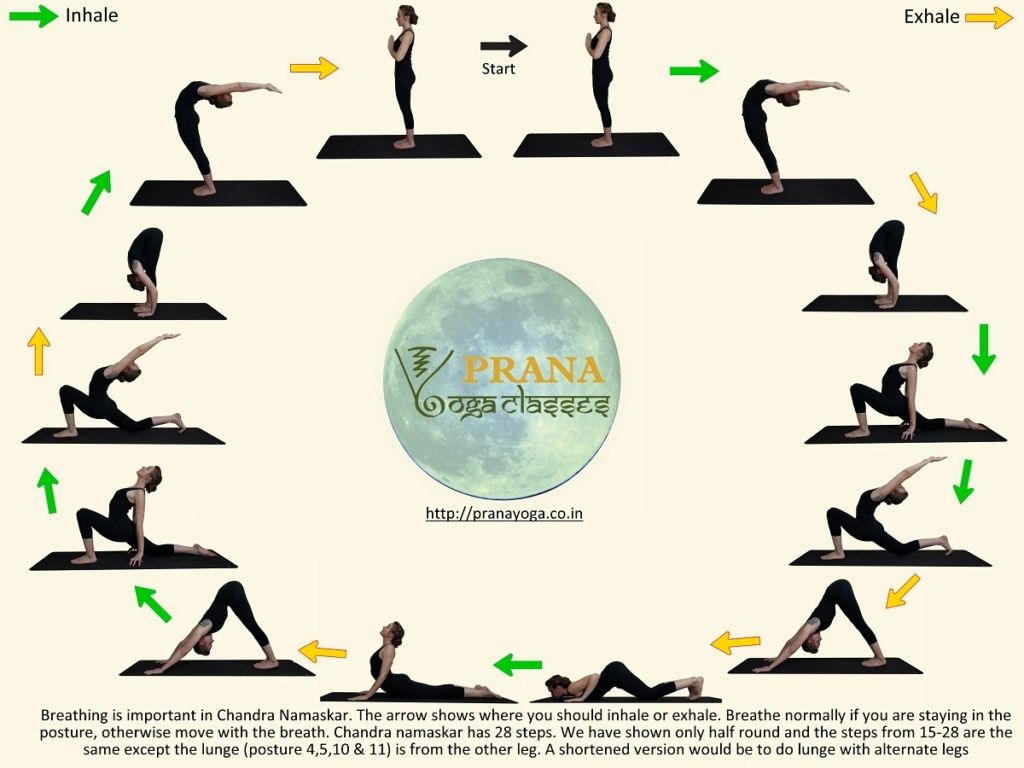 Hatha Yoga Poses Explained