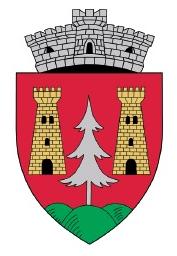 ROU SB Boita CoA - Galeria de steme și steaguri ale județului Sibiu - Wikipedia