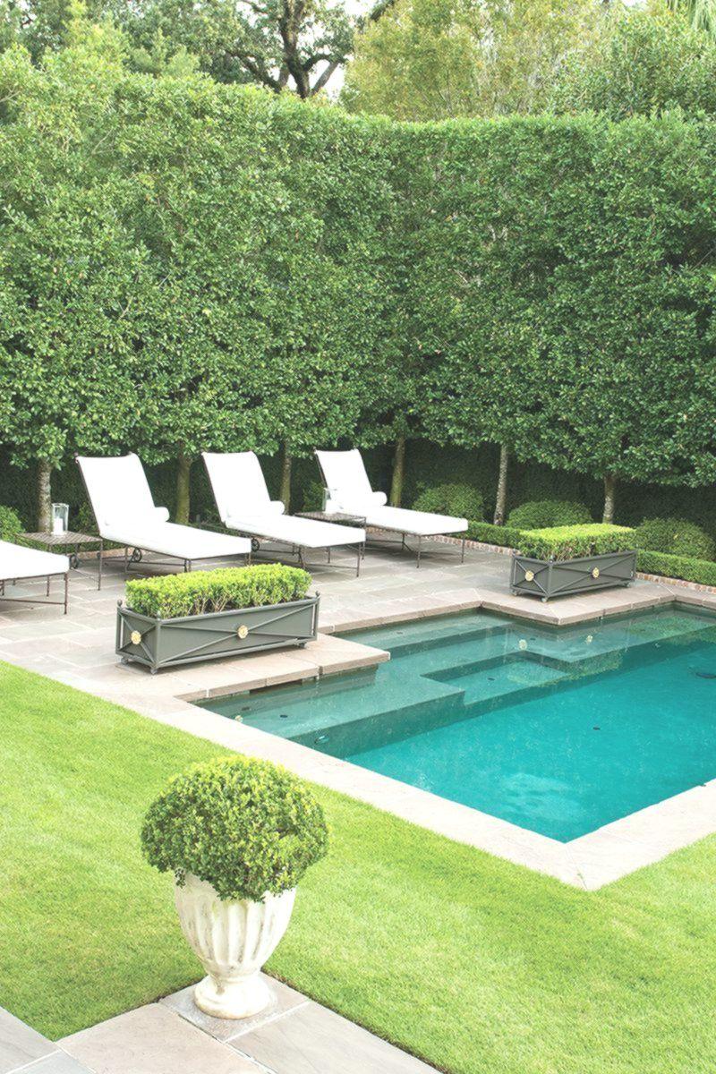 14 Scrumptious Minimalist Kitchen Organization Ideas New Ideas In 2020 Swimming Pool Designs Swimming Pools Backyard Large Backyard Landscaping