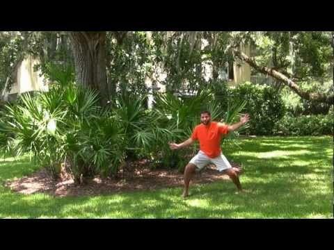Dwarf Palmetto Palms - Home Landscapes http://www.tytyga.com/Dwarf-Palmetto-Palm-p/dwarf-palmetto-palm-tree.htm#