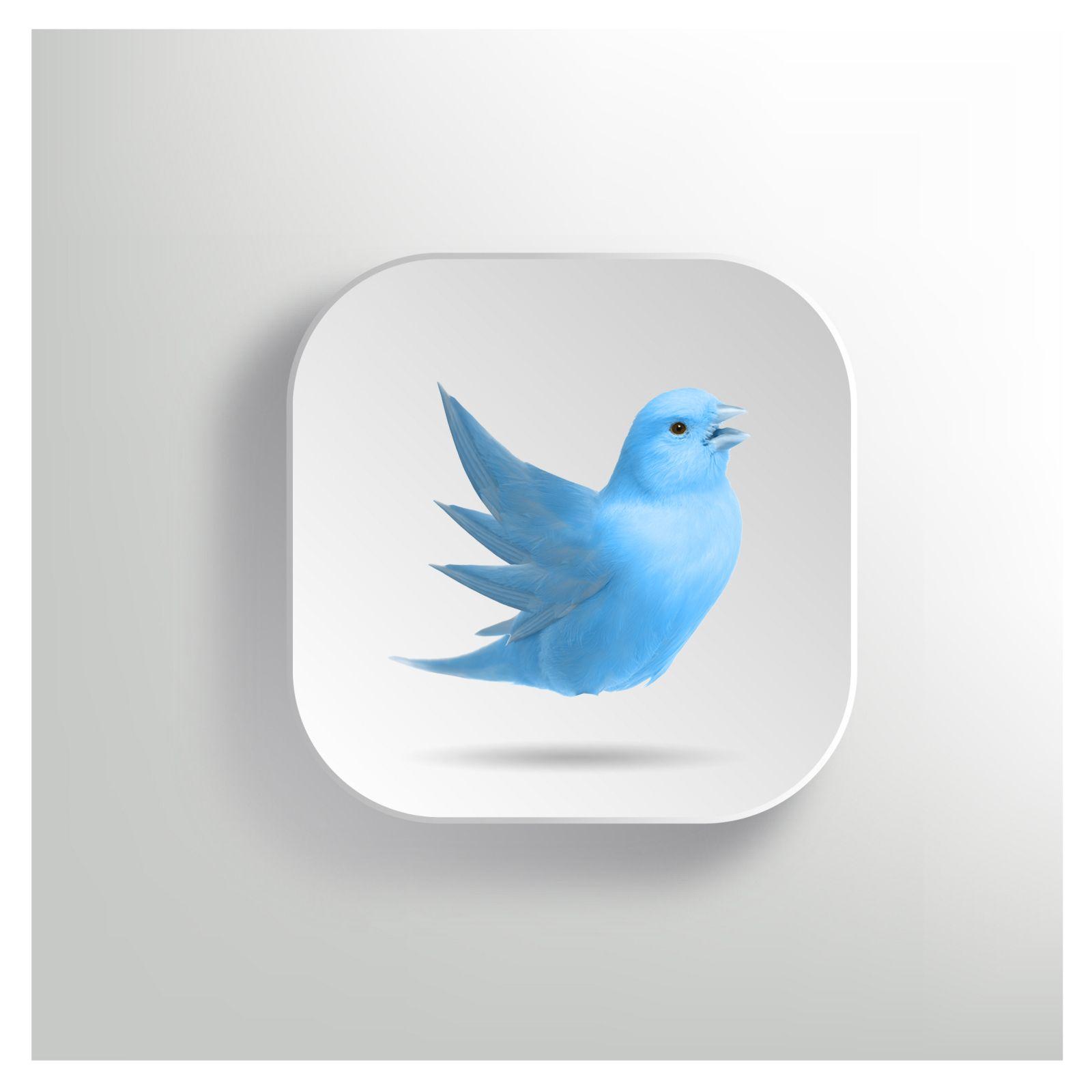 Real life Twitter app icon I designed | App Icon Design