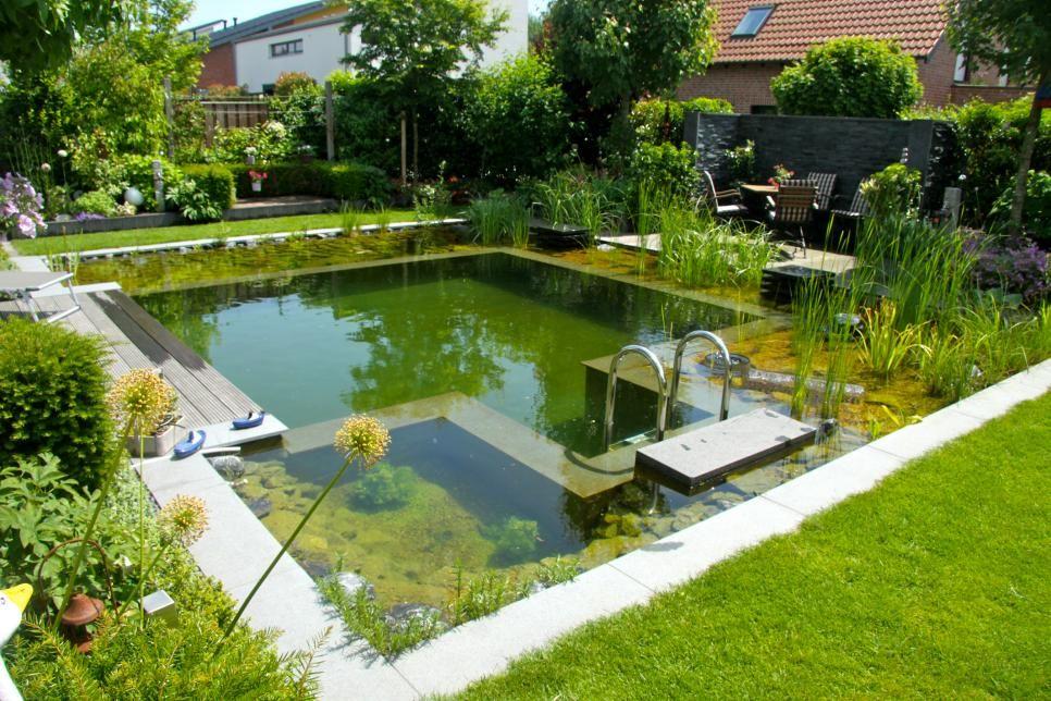 Amazing Natural Swimming Pools | Natural swimming pools ...