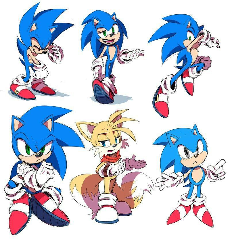 Bases Para La Serie Xdxd Sonic Fotos Como Dibujar Personajes Sonic Dibujos