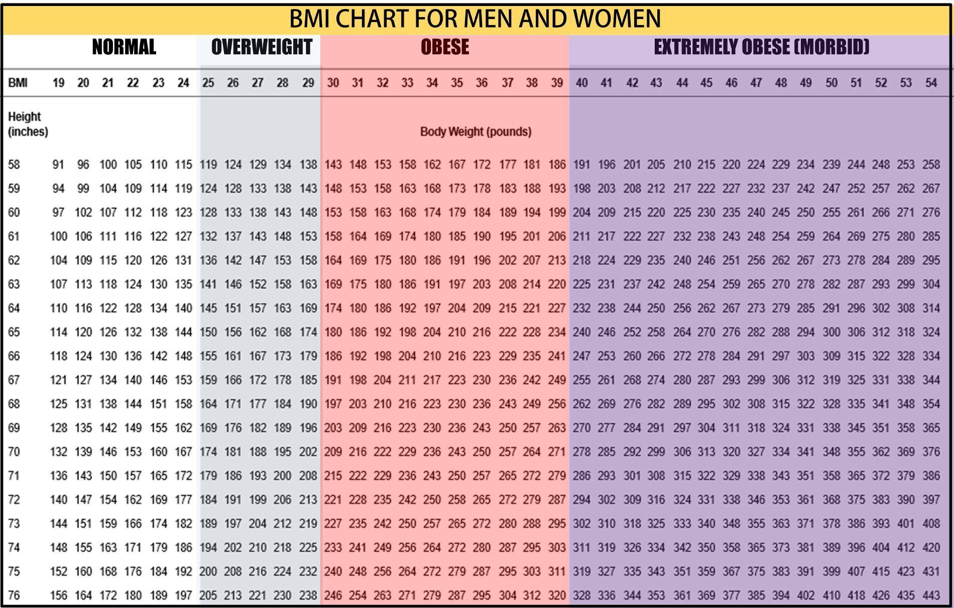Pin On Bmi Chart
