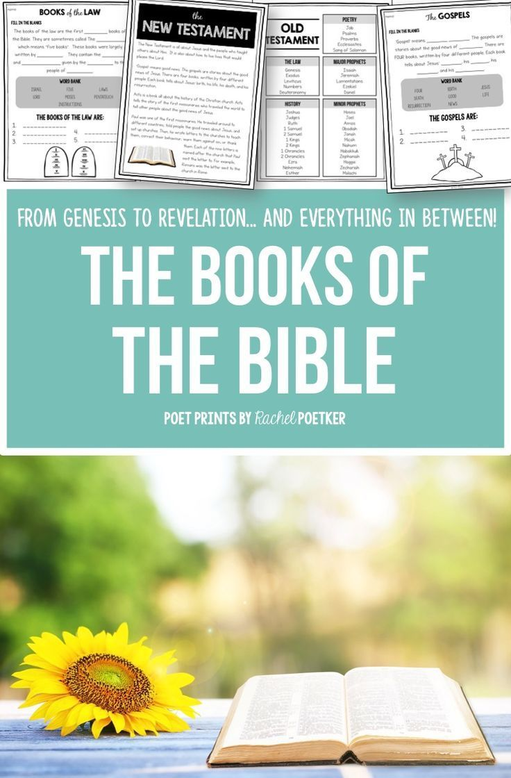 Books of the Bible, Old and New Testament BUNDLE | Fun activities ...