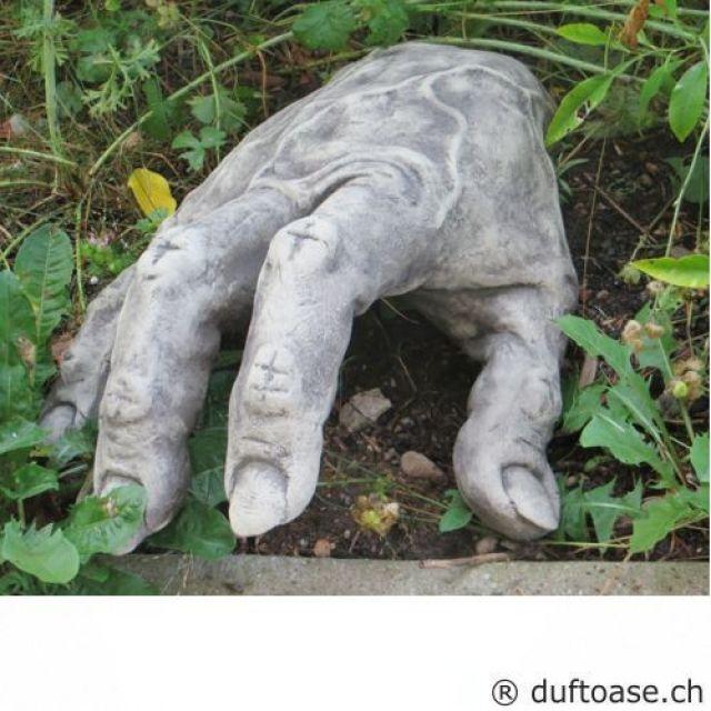 Pin Auf Gartenfiguren Fiona Jane Scott Gartentrolle Und Yogafrosche