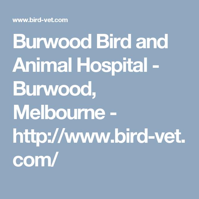 Burwood Bird And Animal Hospital Burwood Melbourne Http Www