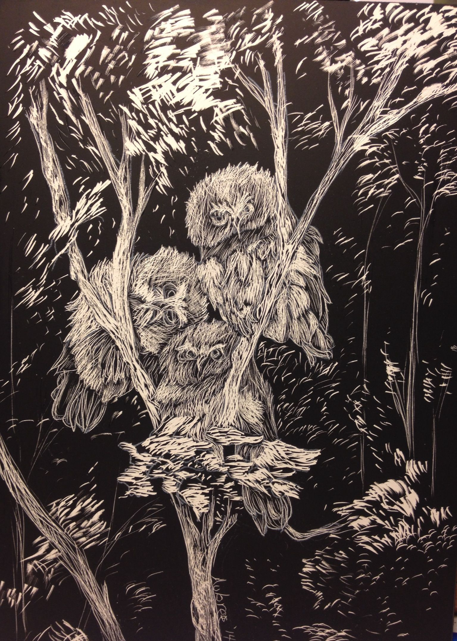 """""""Whooo you lookin at?""""...scratch board by Aubree Lewis."""