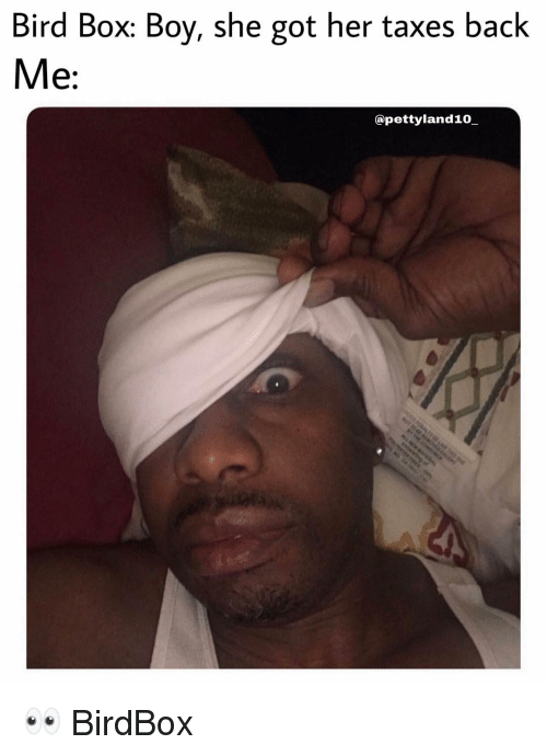 Top 33 Bird Box Memes That Put Internet On Fire Viralmadness Movie Memes Funny Pictures Bird Boxes