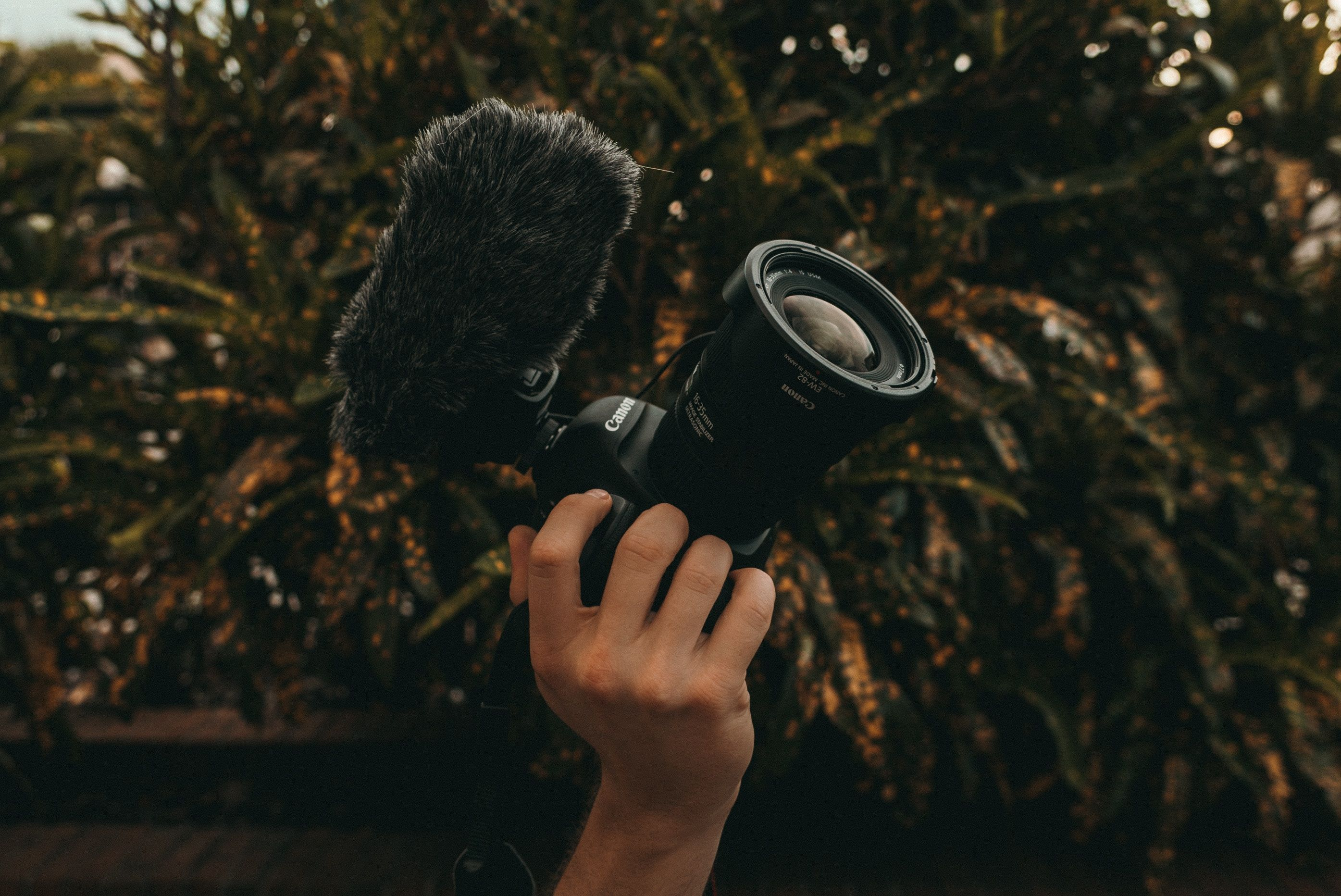 Video Production Bootcamp | Video camera, Amazon video ...