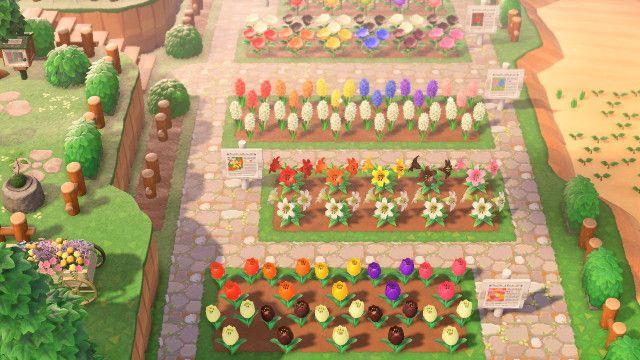 new horizons when — hewonstsi: flower garden in 2020 ...