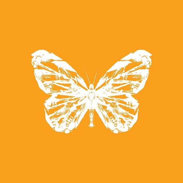Monarch #art #abstract #illustration #colorful #colourful #orange #insect #butterfly #newzealand #sambunny