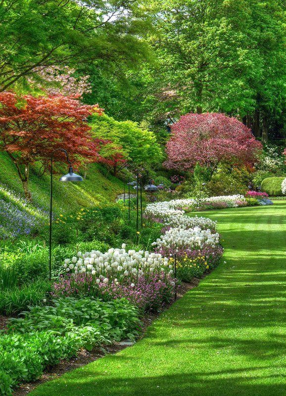 Buschart gardens near Victoria BC #butchartgardens ...