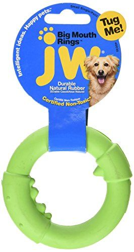 Jw Pet Company Big Mouth Ring Single Dog Toy Small Colors Vary