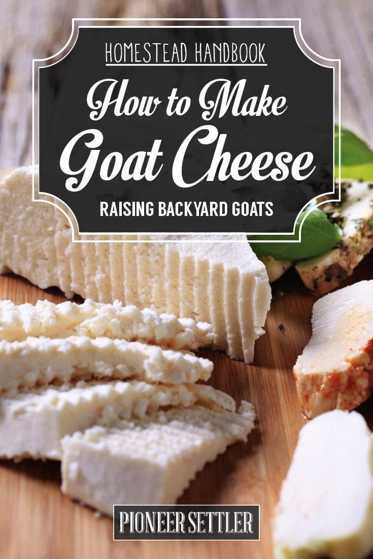 to Make Goat Cheese -How to Make Goat Cheese -  Homemade goat cheese recipes - great for gifts  How