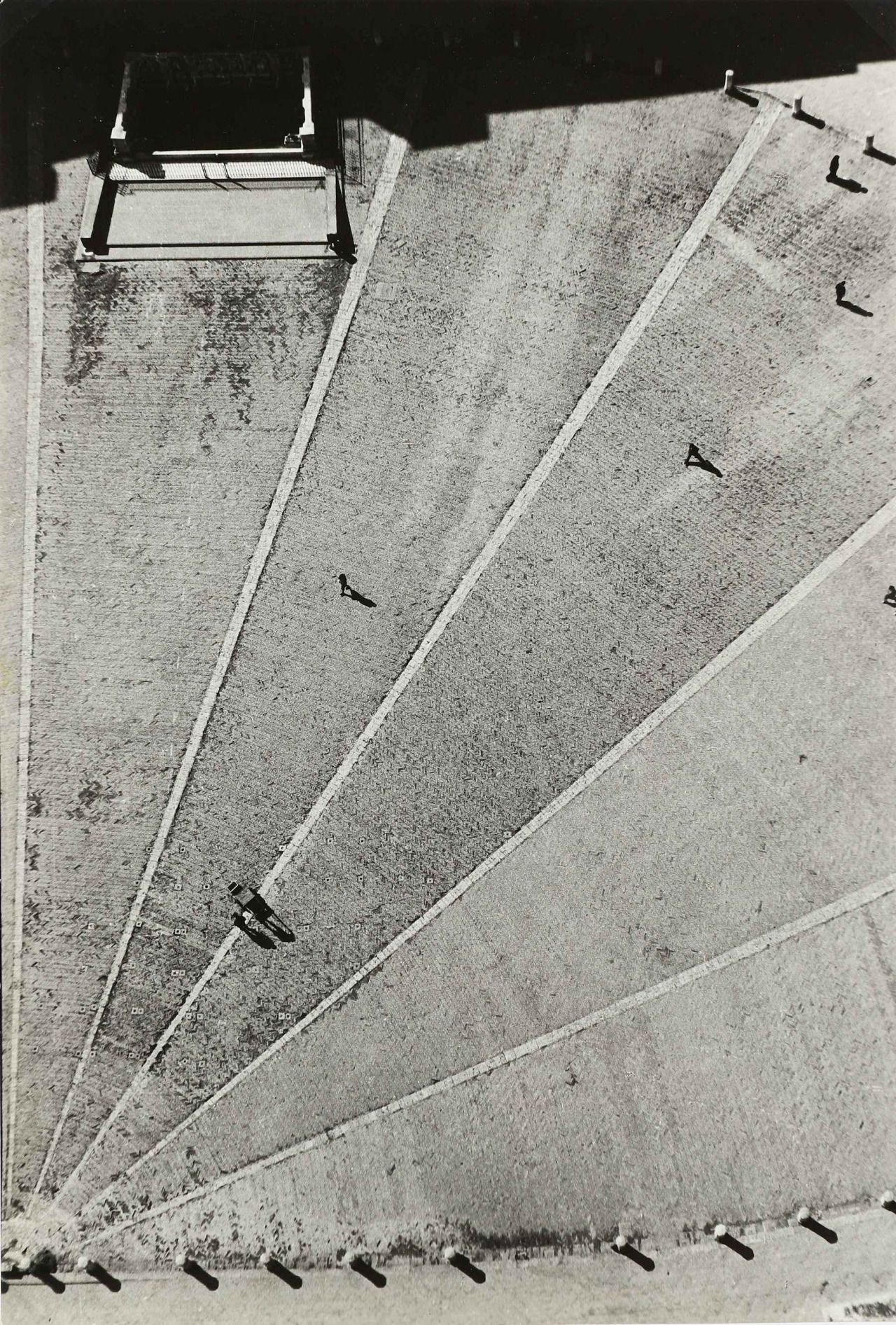 Riccardo Moncalvo Siena La Piazza C 1950 Photography I B W  # Bozzetto Muebles