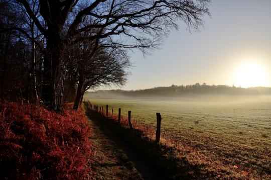Campage au soleil levant Image gratuite sur Pixabay