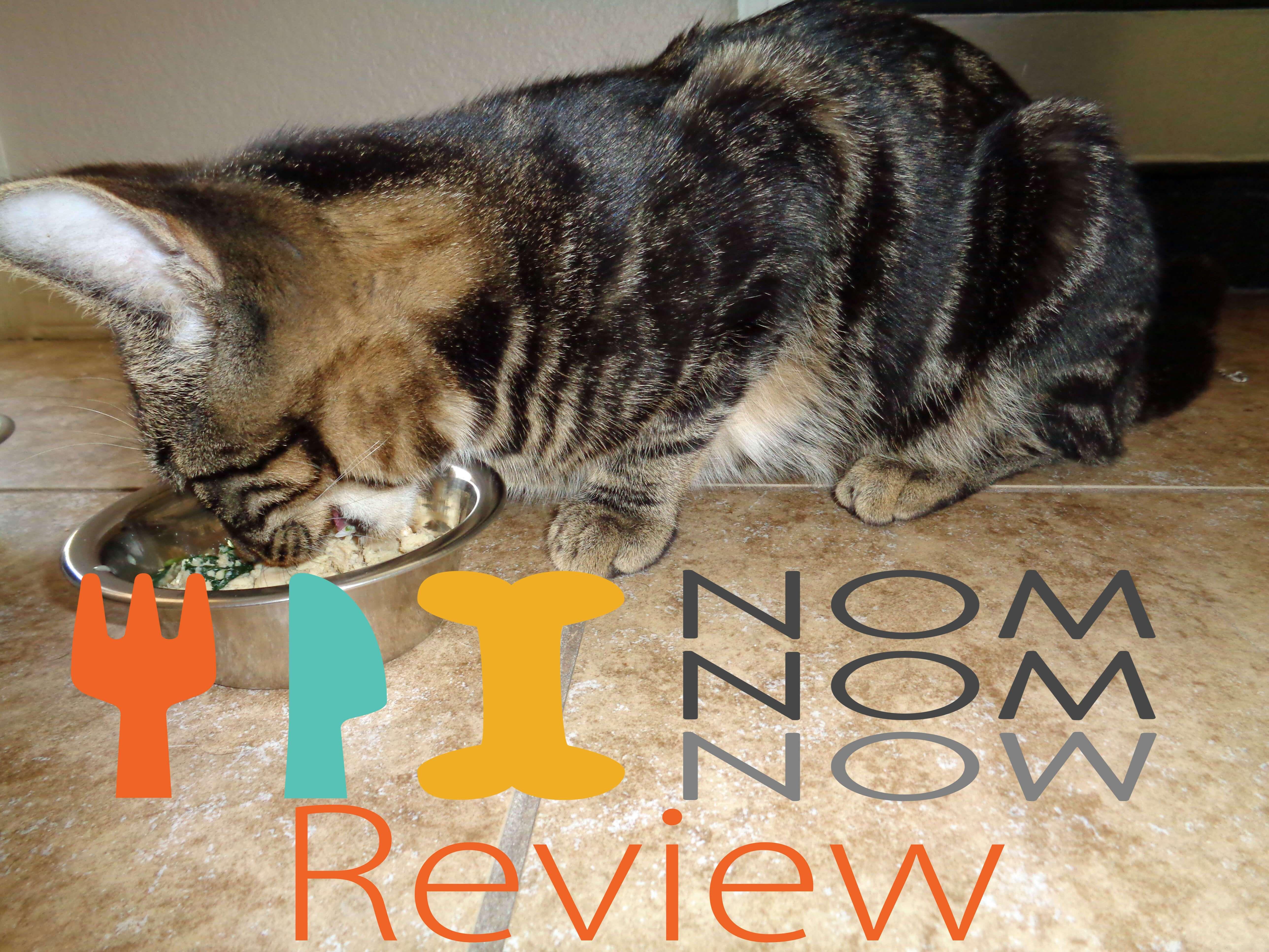 NomNomNow Cat Food Review Cat food reviews, Cat food, Cats