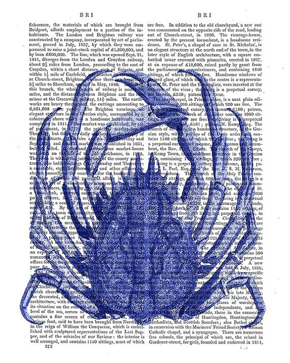 Solid-Faced Canvas Print Wall Art entitled Blue Crab
