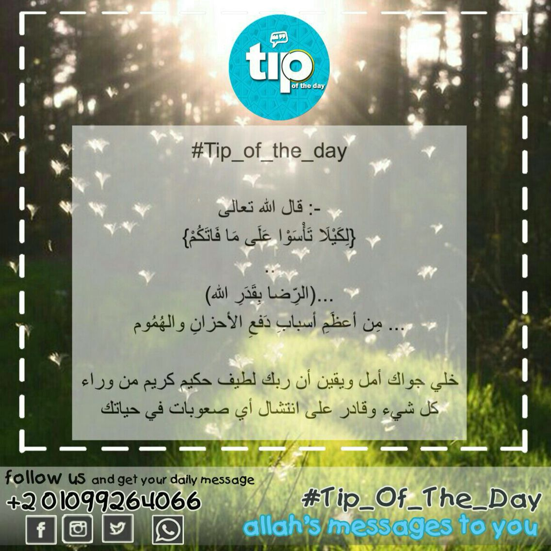 Pin On Tip Of The Day