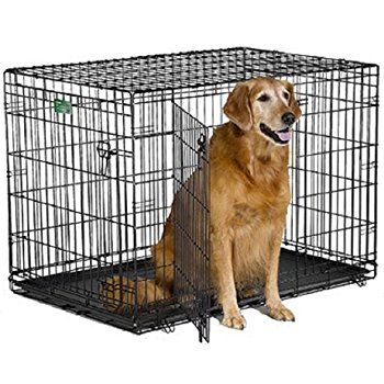Midwest Icrate Double Door Crate With Divider For Pets 42 Inch Pet Kennels Pet Supplies Http Petplaybale Com Dog Crate Wire Dog Crates Large Dog Crate