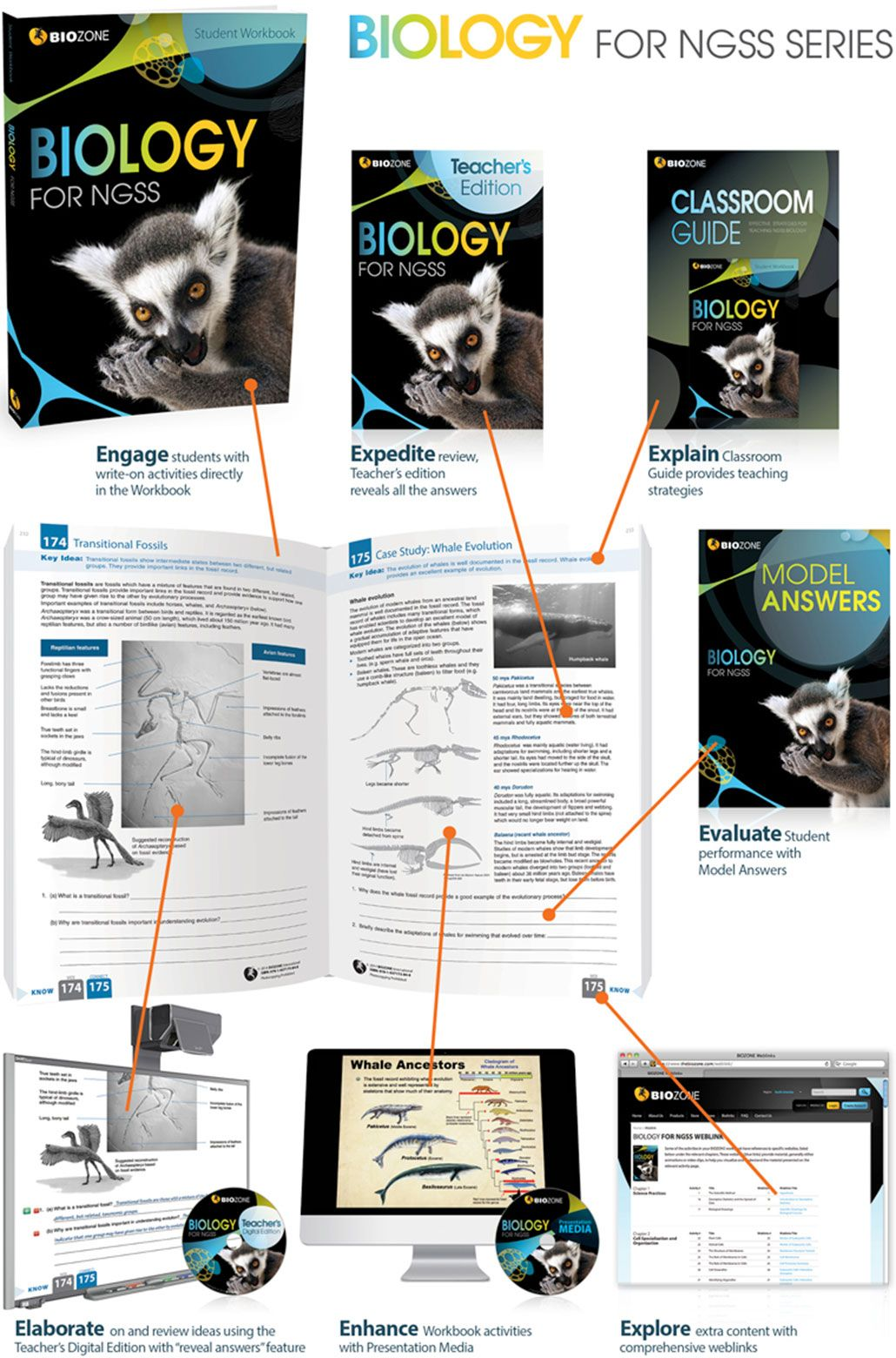 Biology for ngss student workbook biozone biology for ngss is an biology for ngss student workbook biozone biology for ngss is an entirely new resource fandeluxe Choice Image