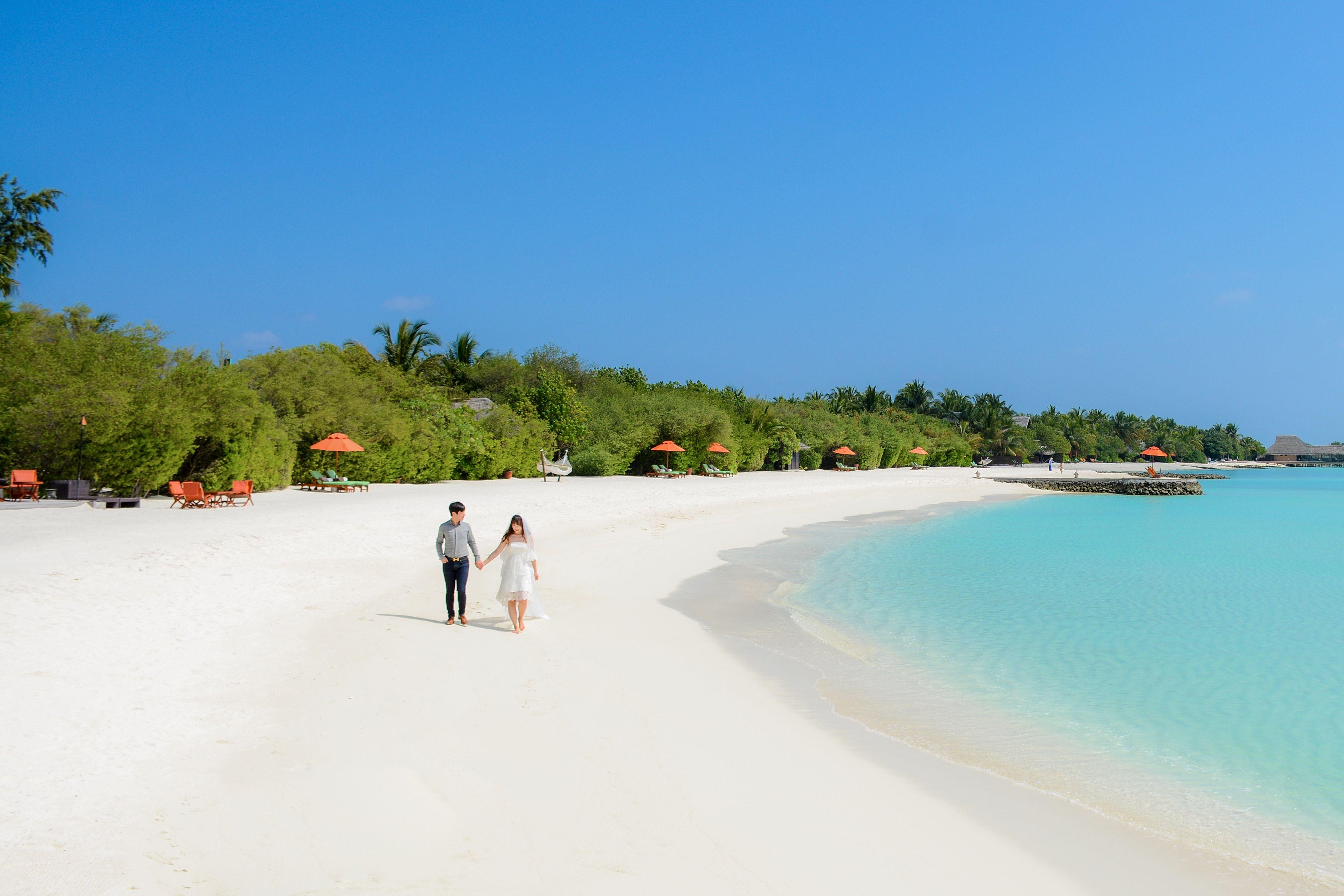 Account Suspended Wedding send off, Beautiful beach