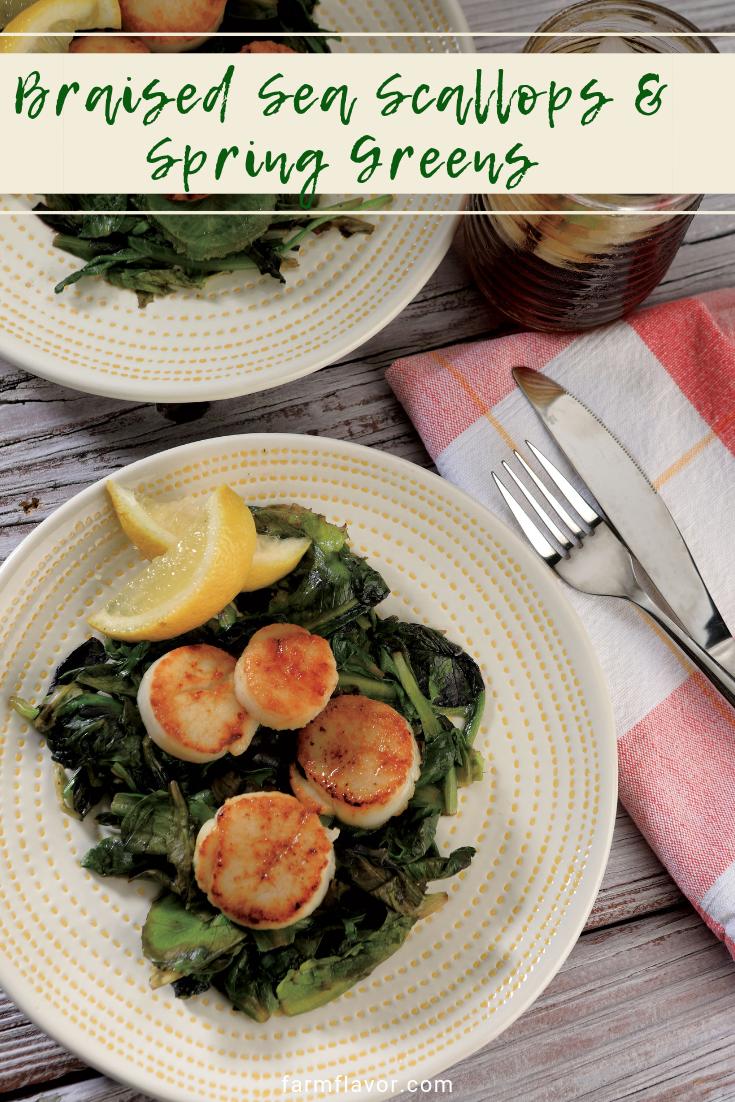 braised sea scallops over spring greens seafood recipes fresh scallops sea scallops pinterest