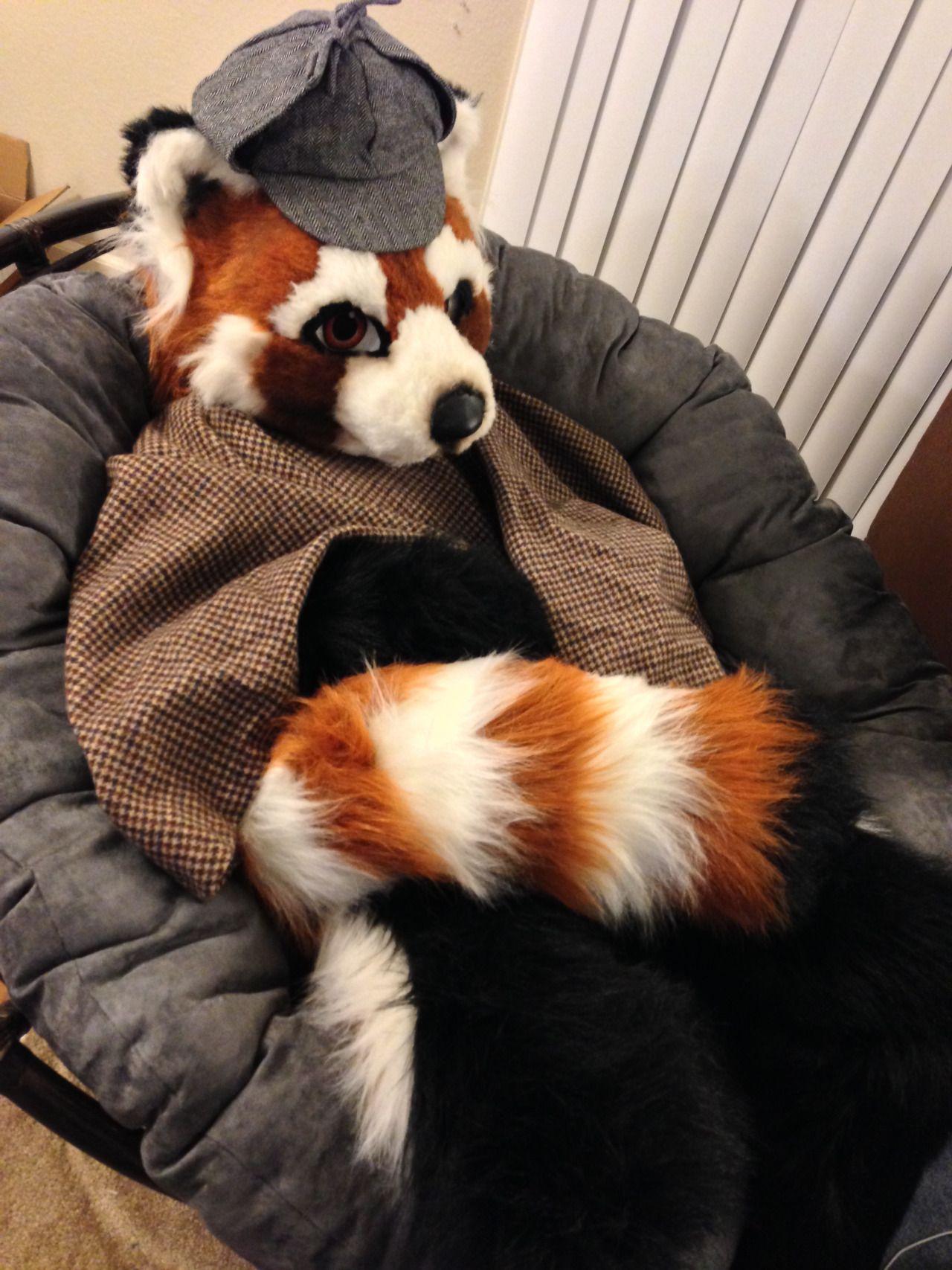 Fursuit Panda cosplay sherlock holmes red panda fursuit captain basil