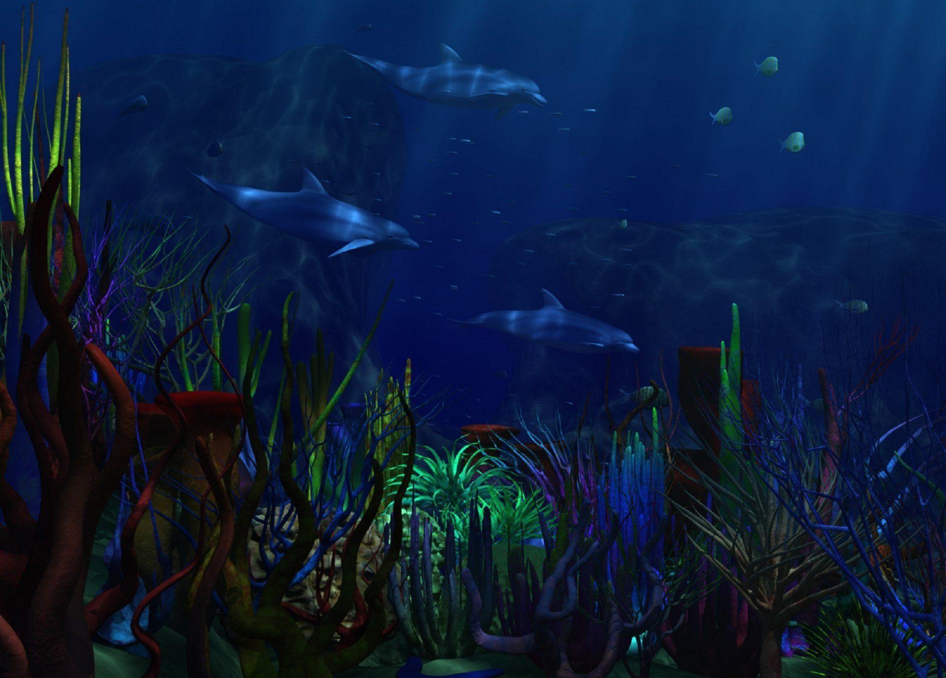 Underwater world sea dolphins algae corals dark blue background underwater underwater world sea dolphins algae corals publicscrutiny Images