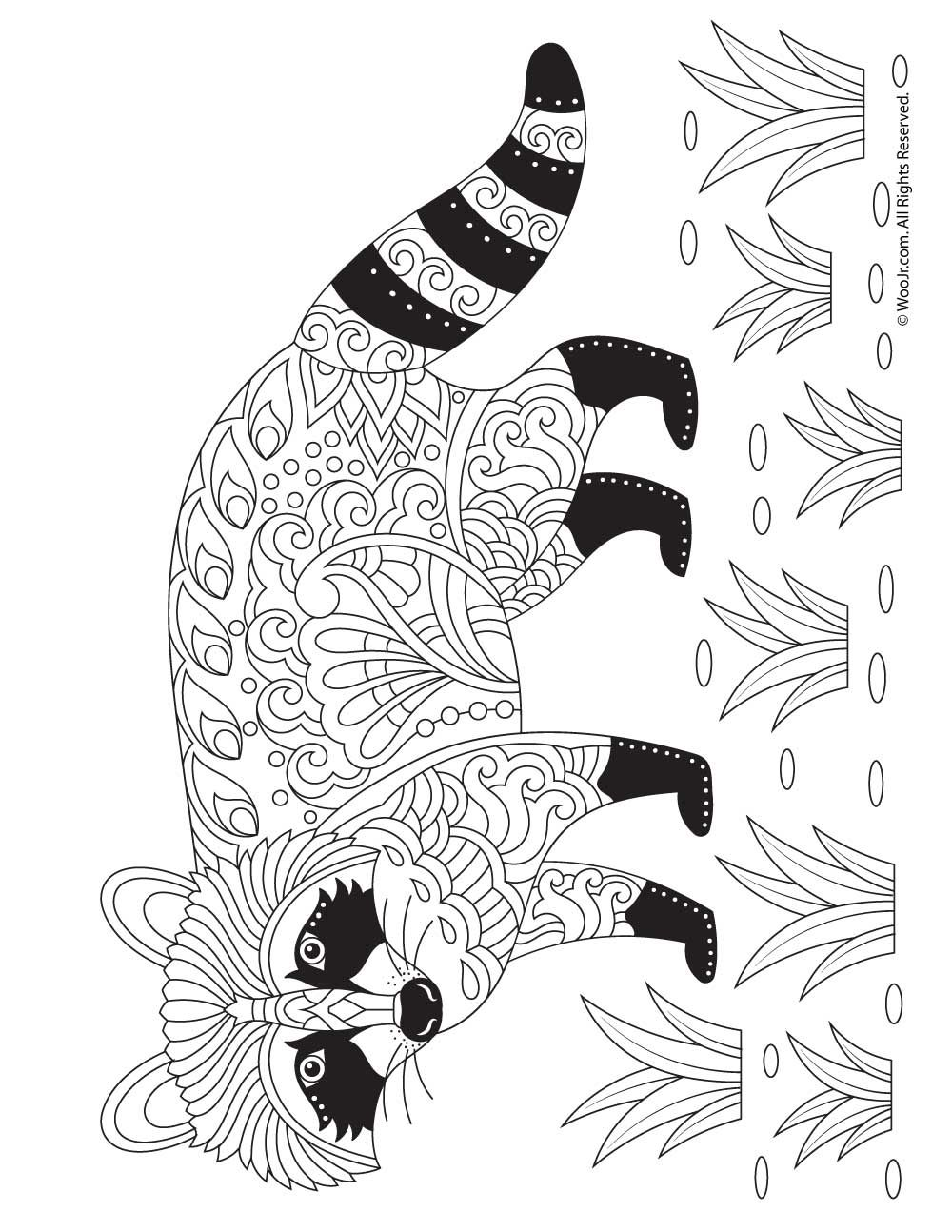 Raccoon Adult Coloring Page Animal Coloring Pages Deer Coloring