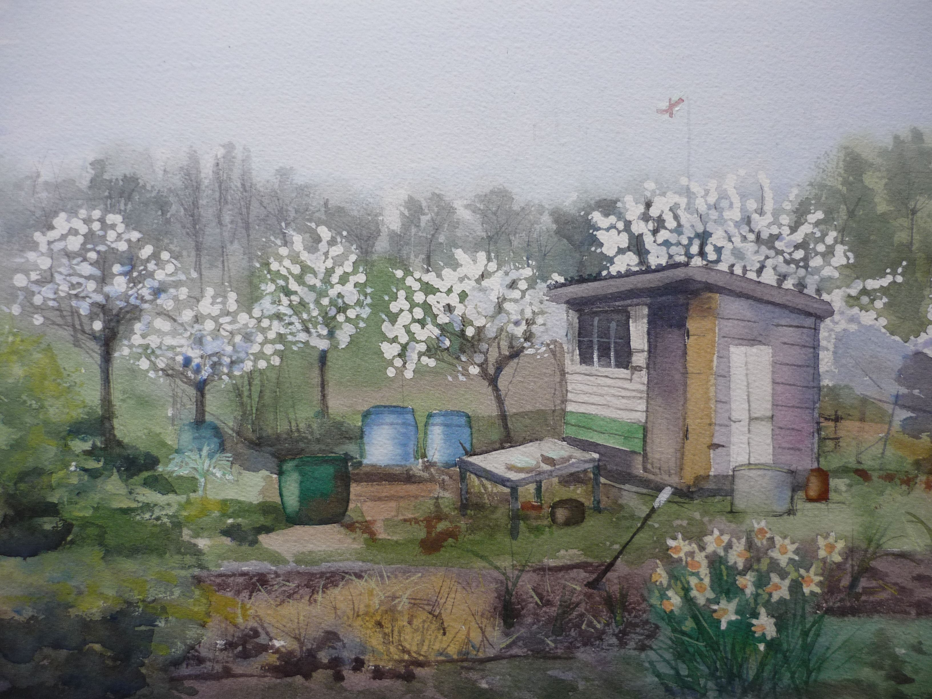 Spring at Brentham Allotments (watercolour)