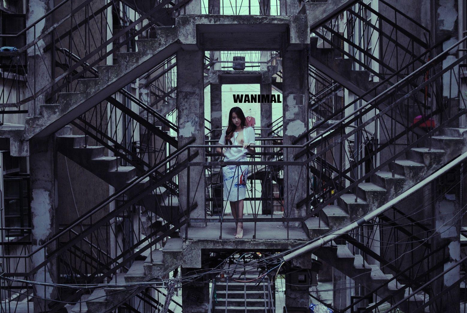 STAIRS -WANIMAL