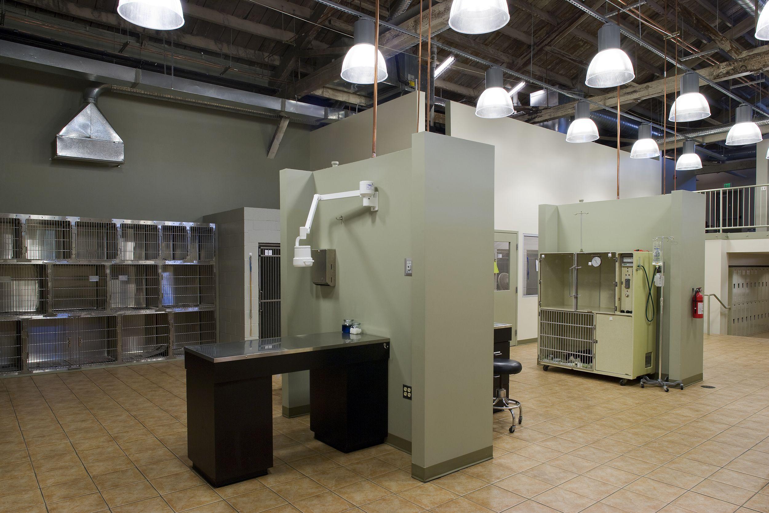 Everhart Veterinary Hospital Veterinarian In Baltimore
