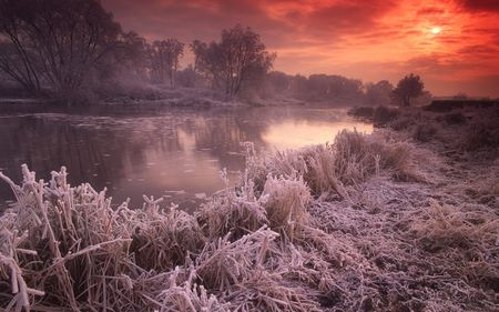 beautiful sunset frost in a winter scape
