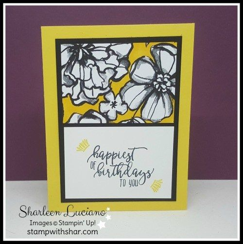 Petal Passion Birthday Card Stampin Up Card Pinterest