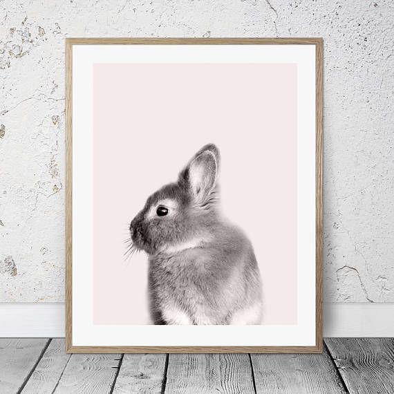 Bunny wall art Rabbit wall decor Pink nursery Monochrome | Nursery ...